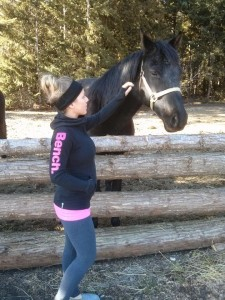 Horse pic